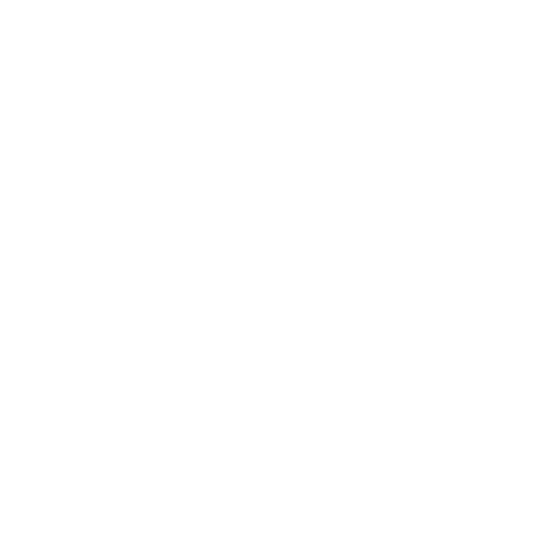 PWC Trader Icon